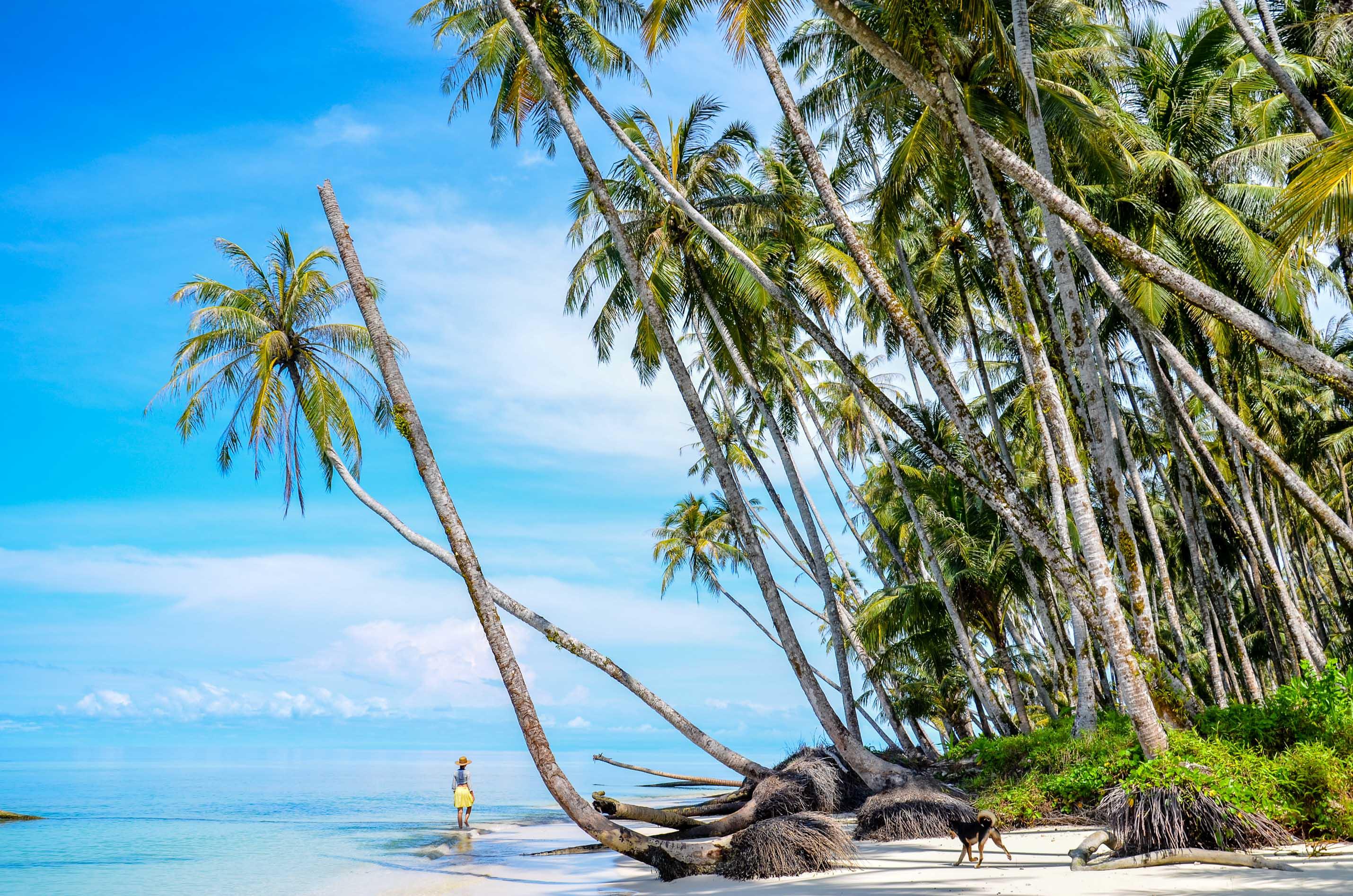 Najbardziej rajska ze znanych nam plaż. Sikandang, Indonezja.