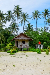 The Coral na wyspie Sikandang. Wyspy Banyak, Indonezja