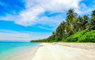Wybrzeże wyspy Palambak