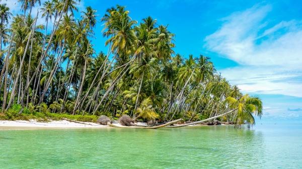 Wybrzeże wyspy Sikandang. Wyspy Banyak, Indonezja