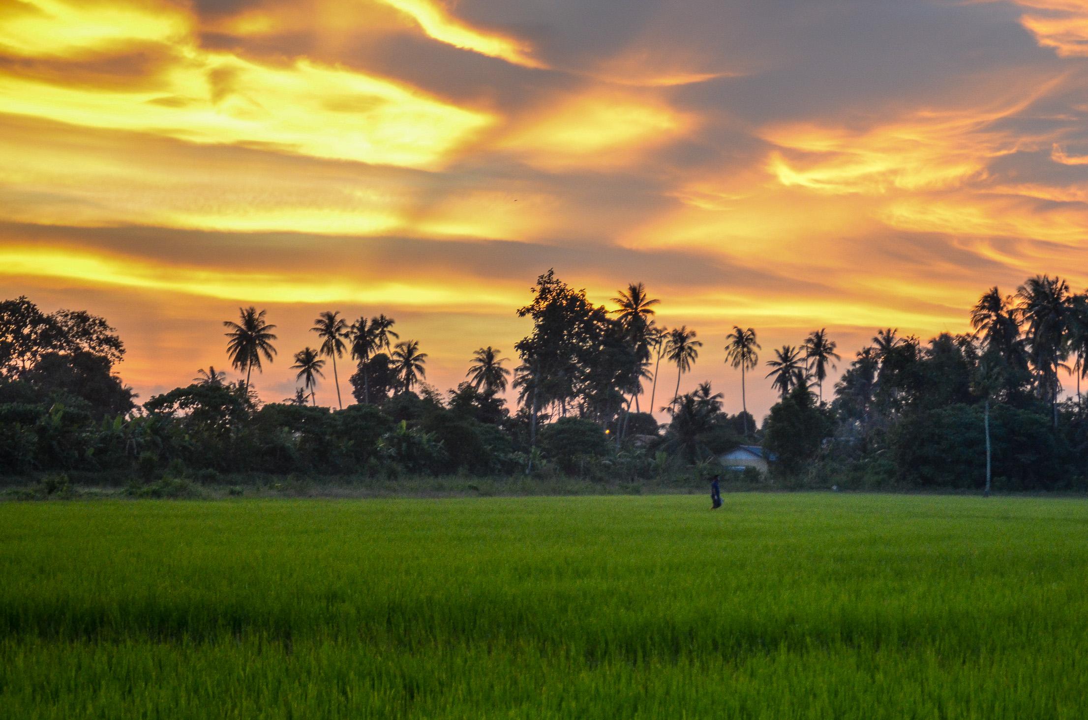 Zachód słońca w okolicach Balik Pulau. Penang, Malezja.