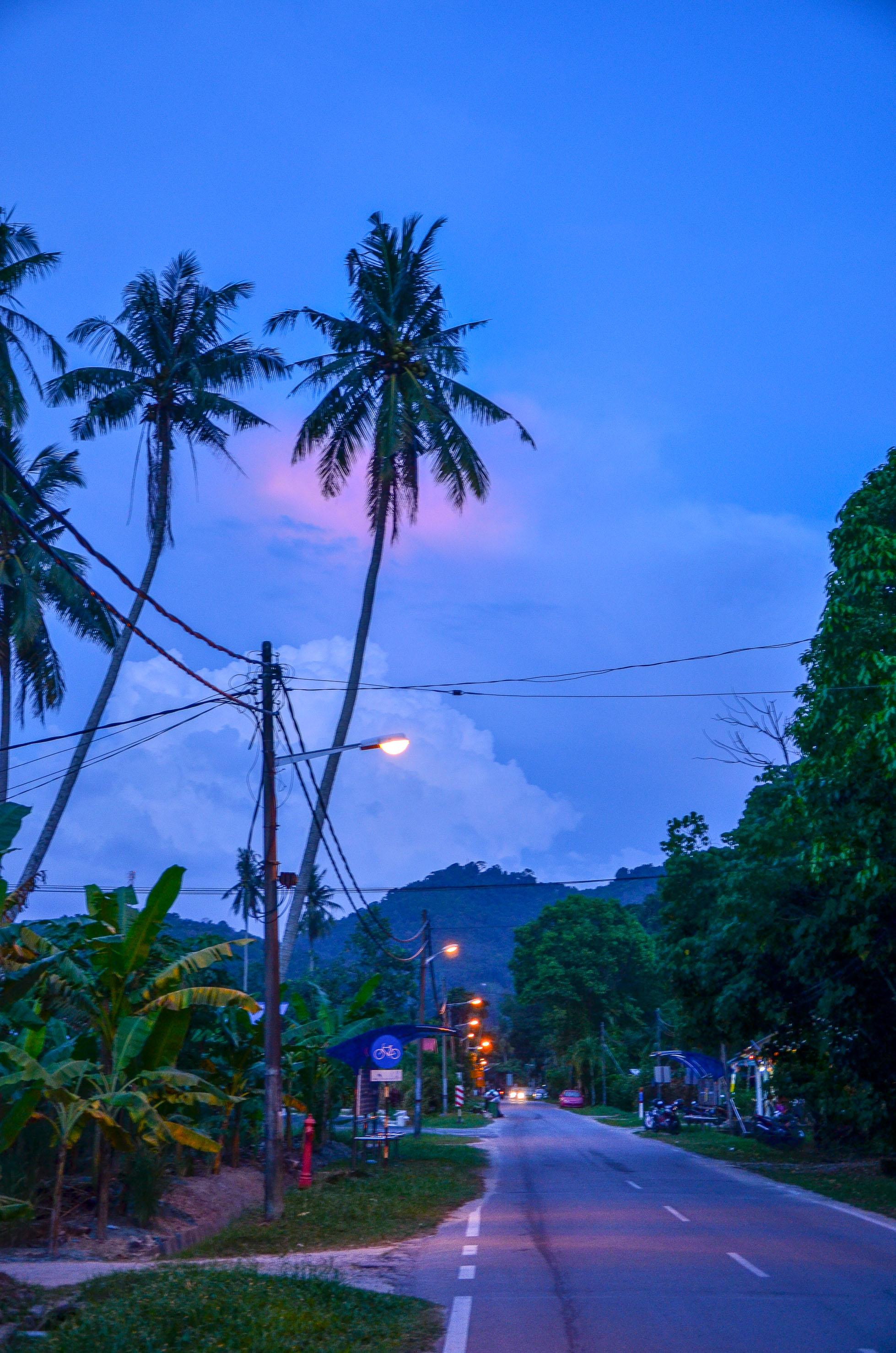Wieczorne powroty do domu. Penang, Malezja.